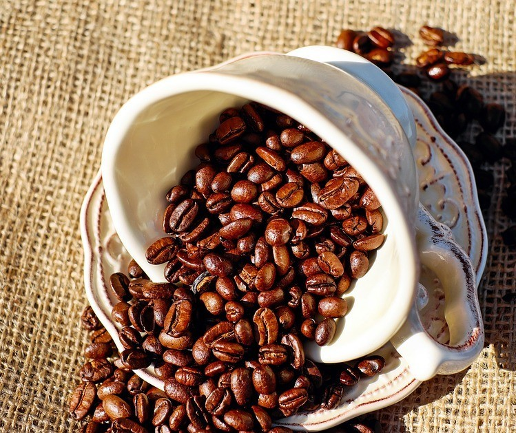 Preço baixo do café preocupa agricultores