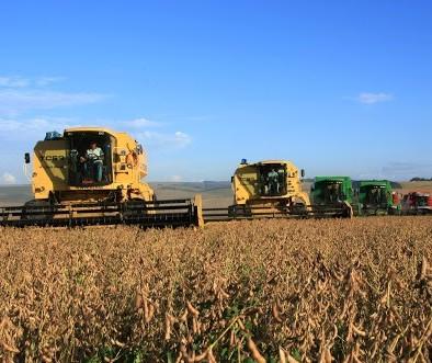 FCStone eleva projeção de safra de soja do Brasil para 124,22 milhões de t