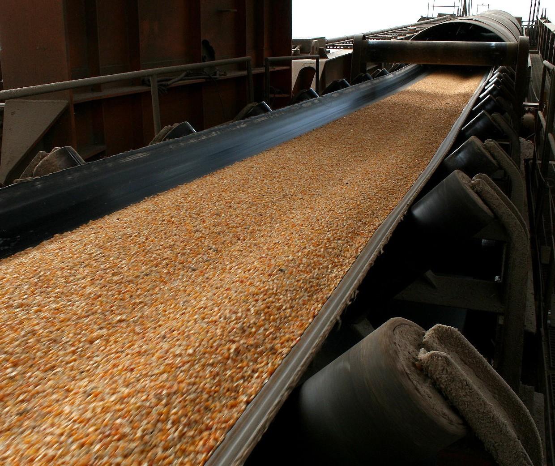 Brasil exportou 143 mil toneladas de milho em junho
