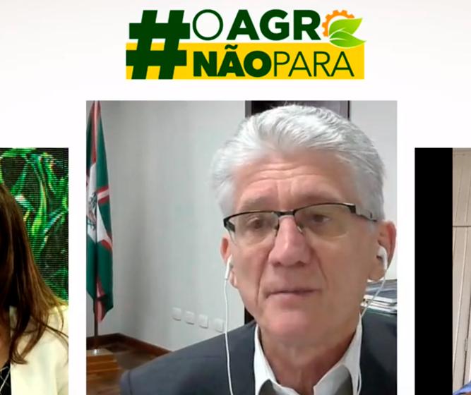Agronegócio está na expectativa do lançamento do Plano Safra 2020/2021