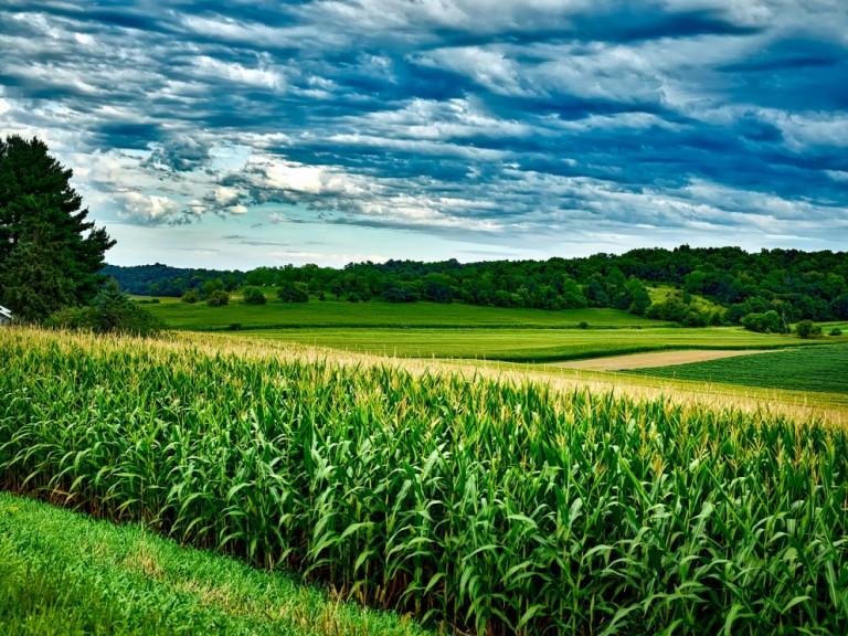 Como promover segurança jurídica para o produtor produzir?