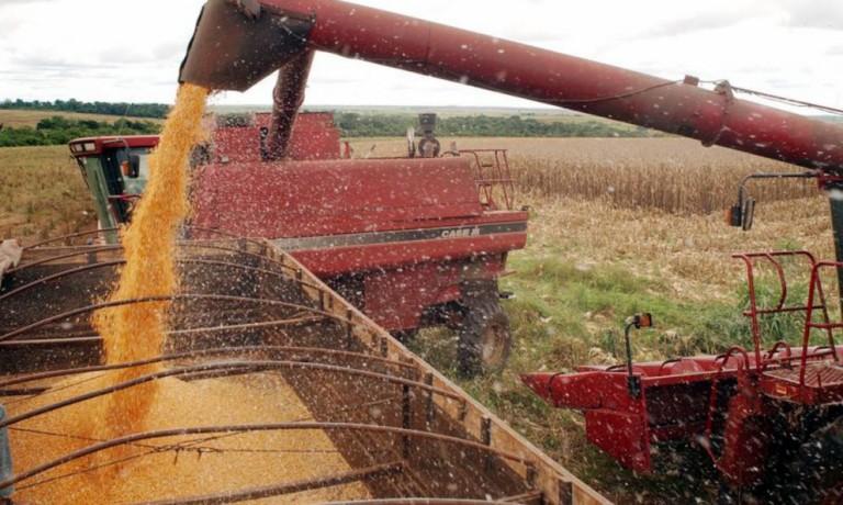 Em 5 anos, Brasil poderá se tornar o maior exportador de grãos do planeta