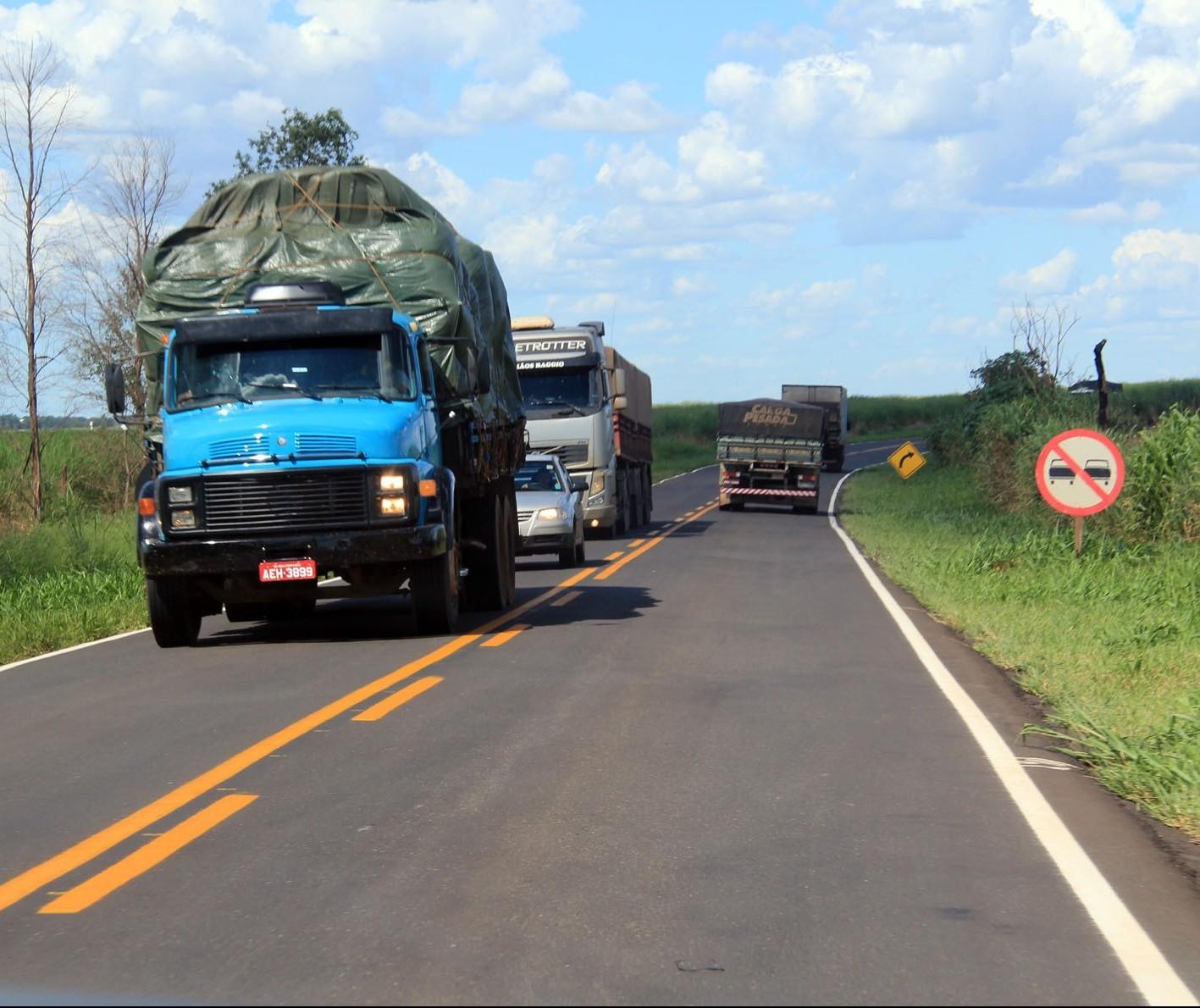 Justiça suspende demarcação de terra indígena no Paraná
