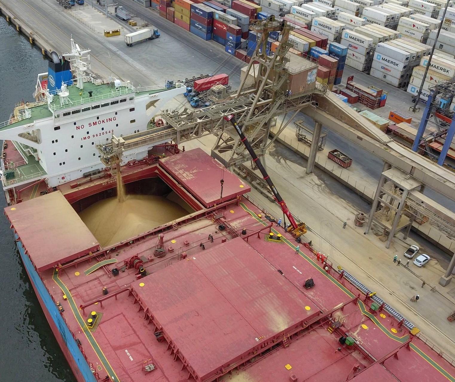 Exportações no Paraná acumulam crescimento de 16% em 2021