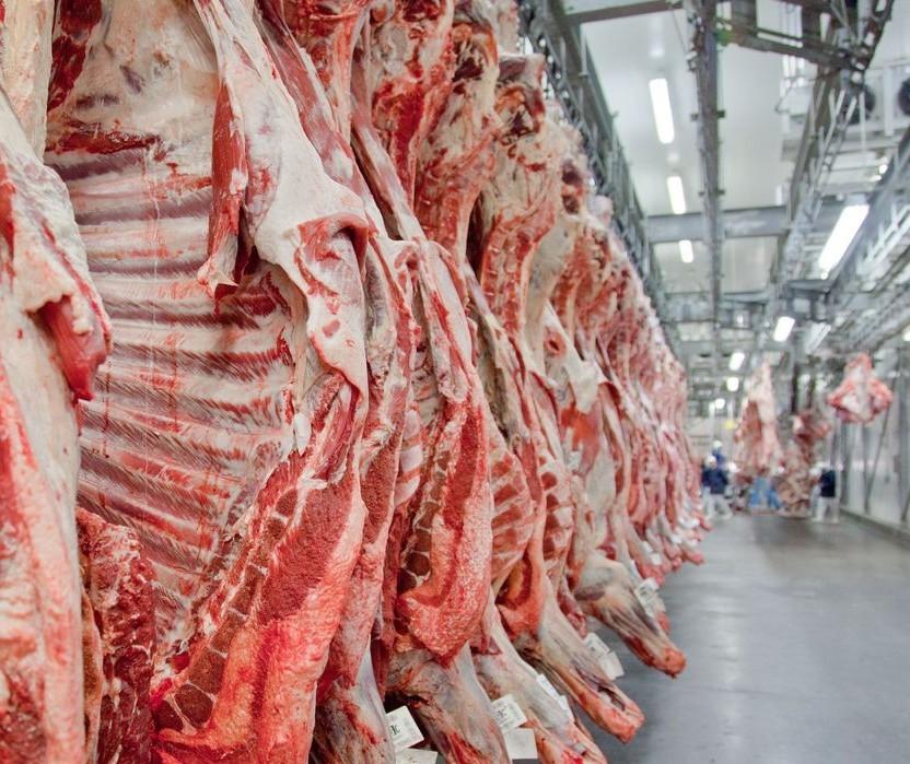 Em 2020 a oferta de carnes por habitante será mantida no Brasil