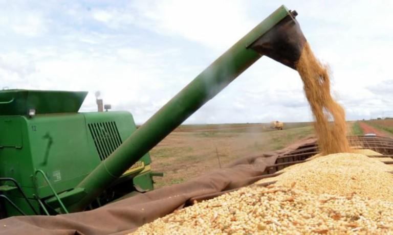 Produção de soja mantém estimativa em 133 mi de toneladas
