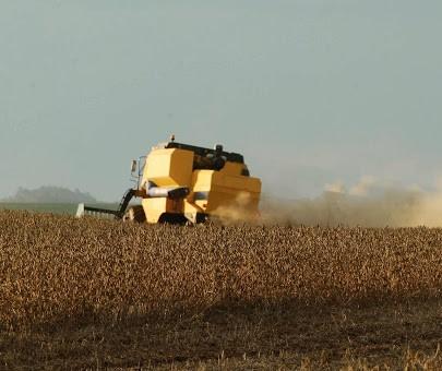 Disputa pela soja brasileira impulsiona valores no mercado interno