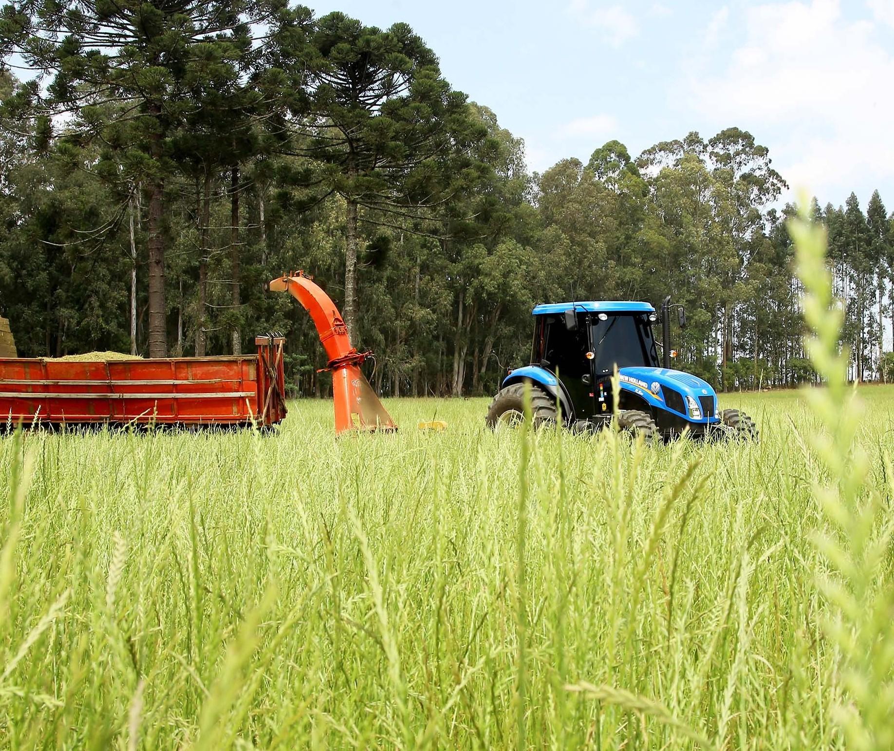 Produtores rurais contrataram R$ 156,6 bi em crédito de julho de 2019 a abril deste ano