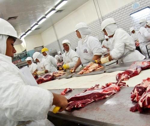 Exportação de carne bovina tem alta de 53% no Brasil