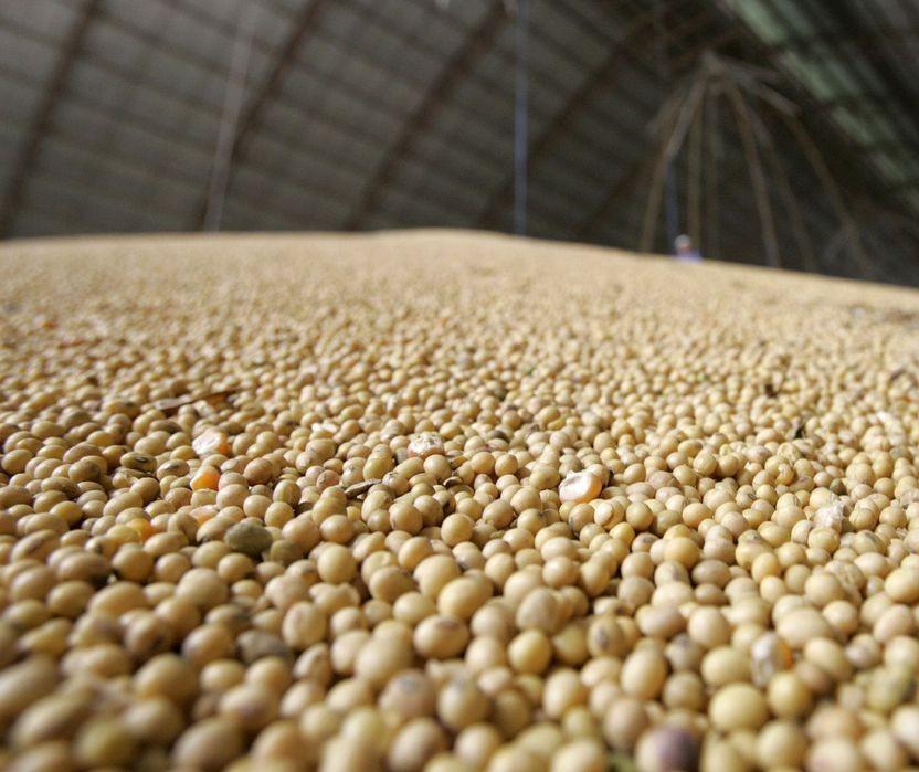 Produção de grãos da safra 2020/21 segue como maior da história: 268,9 milhões de toneladas