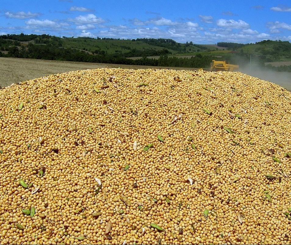Safra de grãos chega a 23,3 milhões de toneladas em 2018