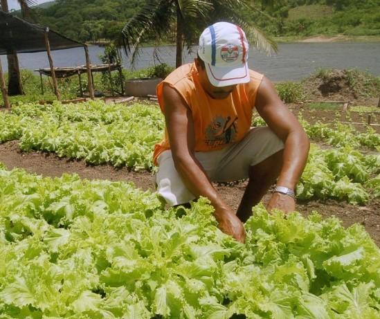 Parceria entre sindicatos rurais e produtores