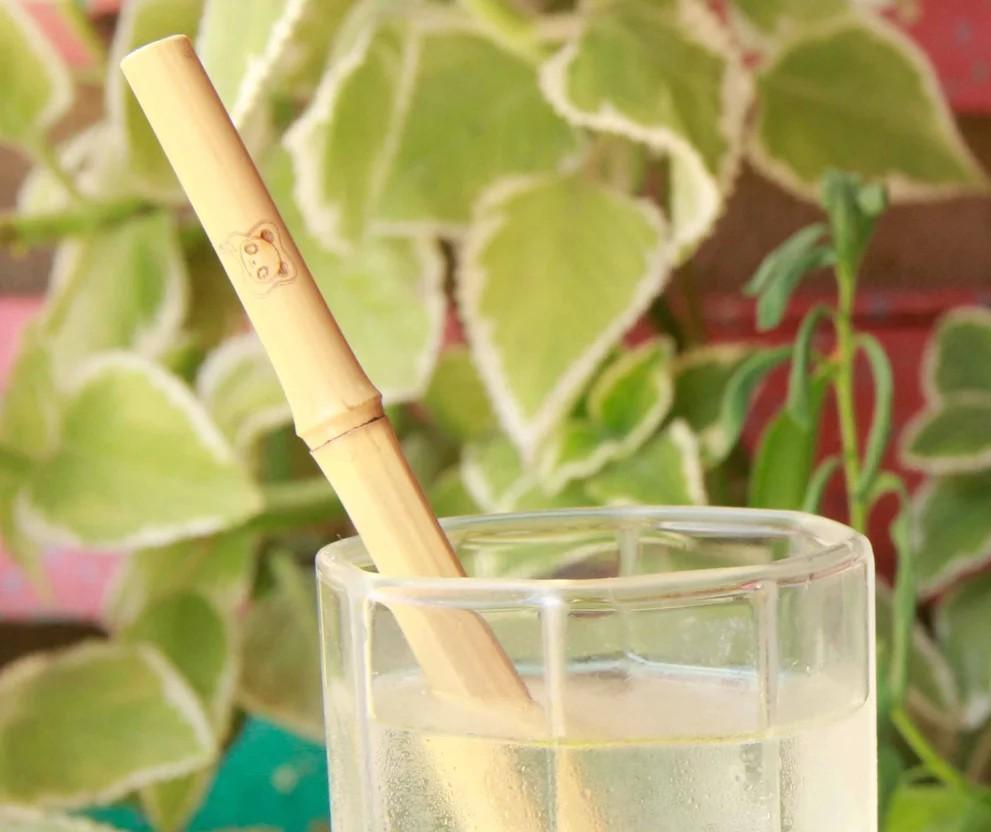 Canudos de bambu são fabricados por família em Maringá