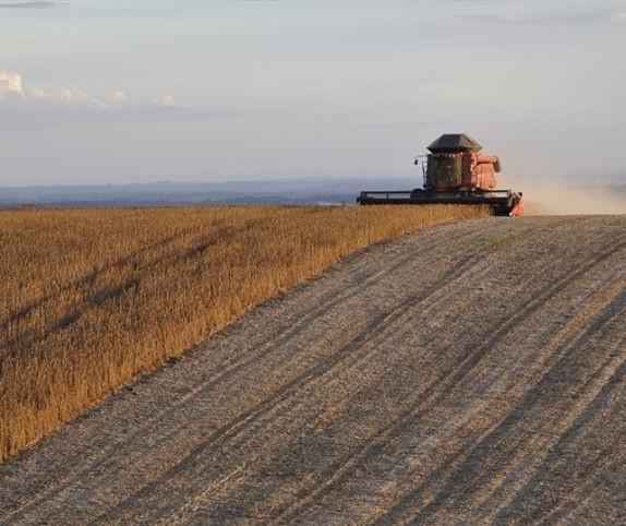 VBP da agropecuária deverá crescer 9,8% em 2020 em relação a 2019