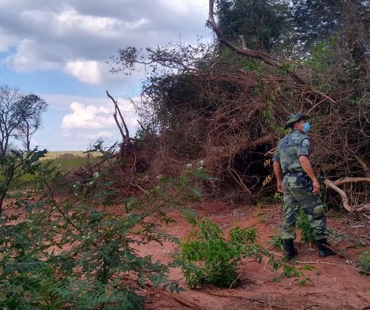 Operação combate desmatamento e apreende objetos de caça a animais silvestres