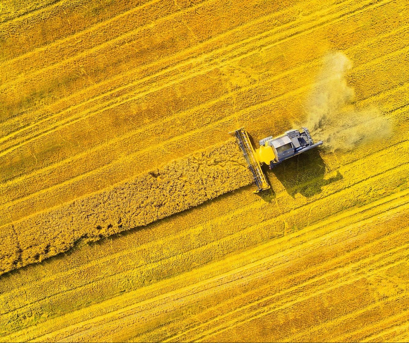 Inovação e tecnologia são temas da 1ª Agrobit