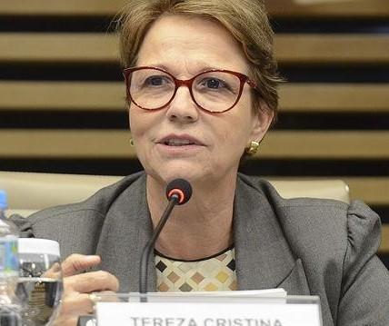 Brasil diz que não fará restrição econômica à China