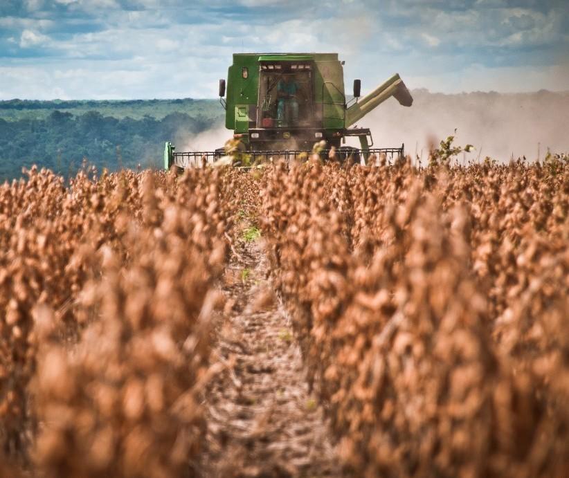 Trabalhos no campo devem aumentar gradativamente
