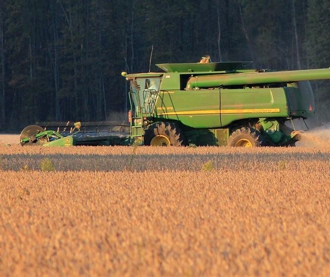 Tendência de alta para os preços da soja continua para 2021 até chegada de nova safra do Brasil