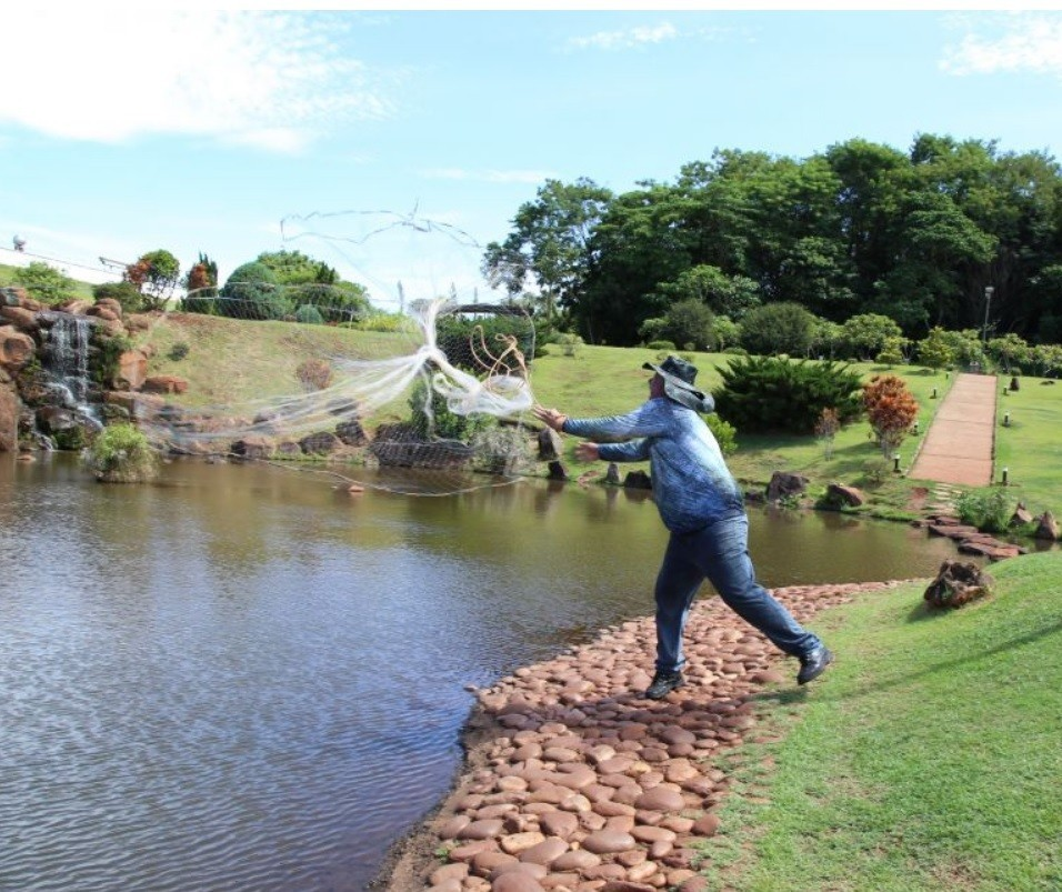 Quase 200 peixes invasores são retirados do lago do Parque do Japão