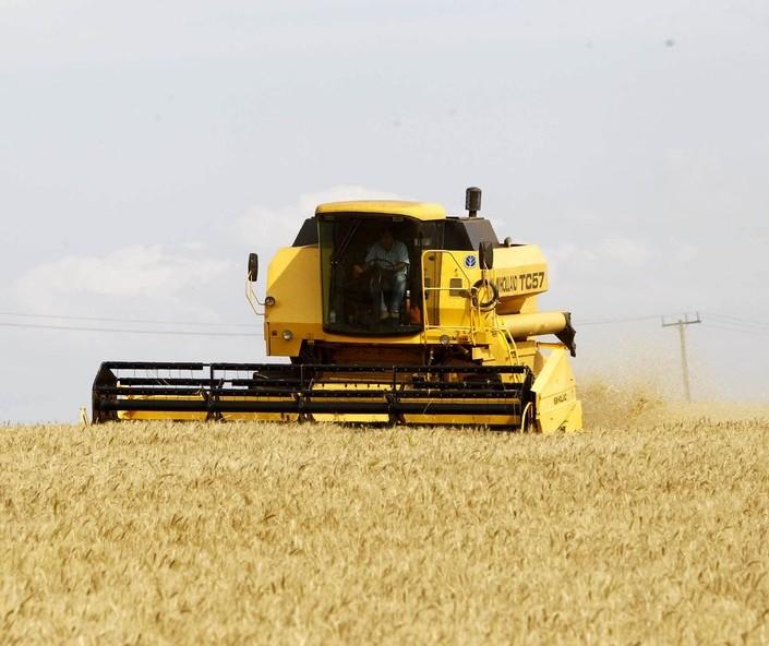 Safra de grãos no Paraná deve atingir 37 milhões de toneladas