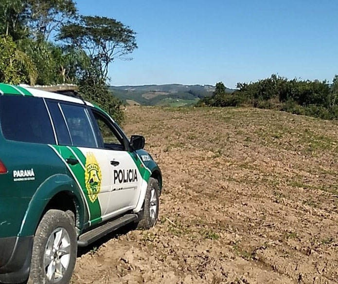 PMA já apreendeu 33 armas para caça este ano na região de Maringá