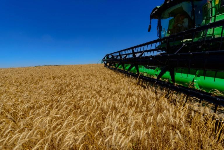 Saldo comercial do agronegócio é o melhor em 12 meses