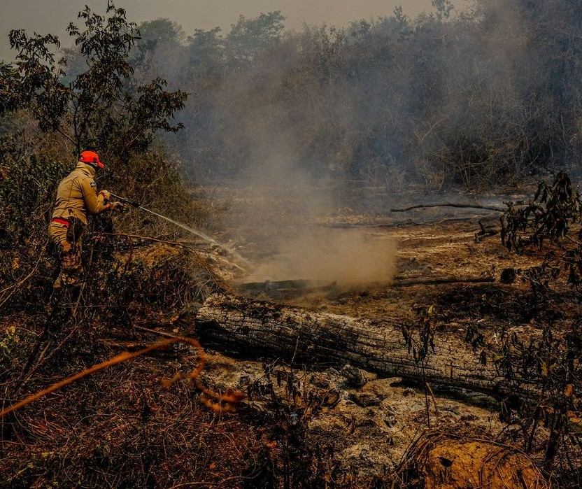 30 bombeiros do Paraná vão ajudar no combate ao fogo no Pantanal