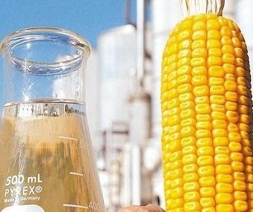 Produção de etanol de milho pode atingir 2,9 bilhões de litros na safra 2020/21, diz Unem