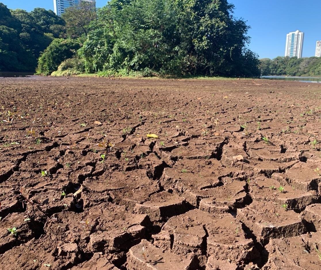 Vídeo: Seca permite atravessar lago do Parque do Ingá a pé