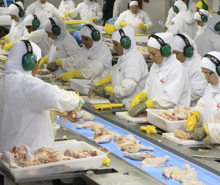 Se a greve não acabar, 90% da produção de proteína animal pode ser interrompida