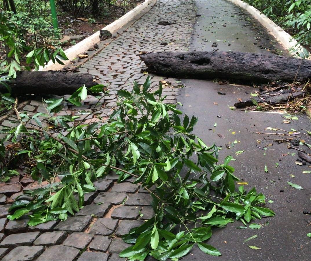 Parque do Ingá ficará fechado neste domingo (24) por causa do temporal