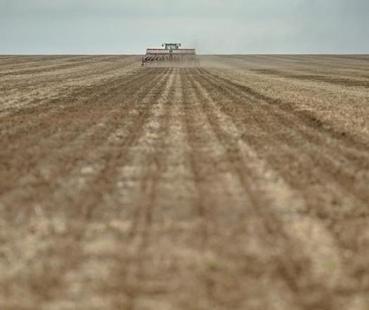 Lavoura dos EUA pode ter grande colheita este ano