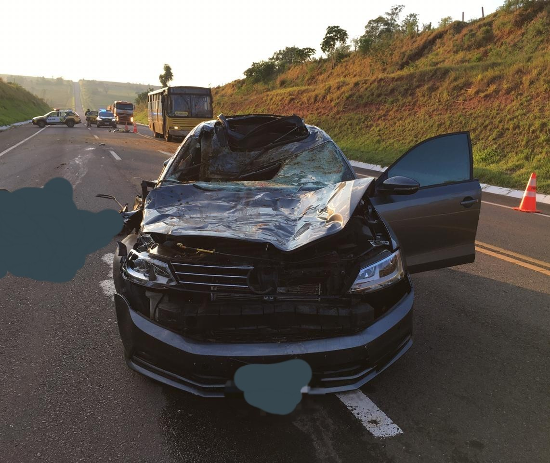 Carro atropela e mata idoso e cavalo na BR-487