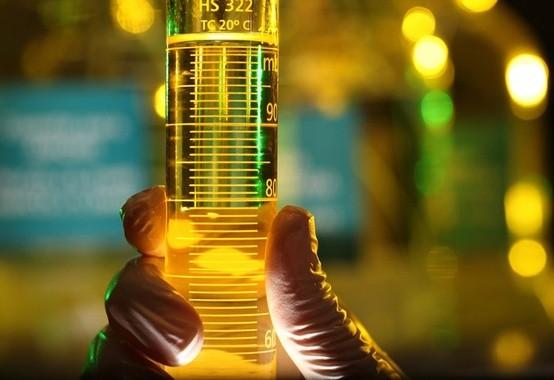 Brasil é o segundo maior produtor de biodiesel do planeta