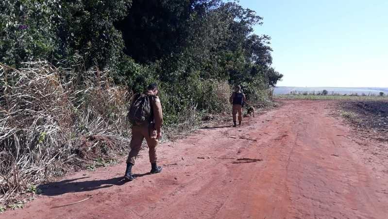 Policiais usando cães farejadores para tentar localizar pistas do casal Foto: Divulgação PM