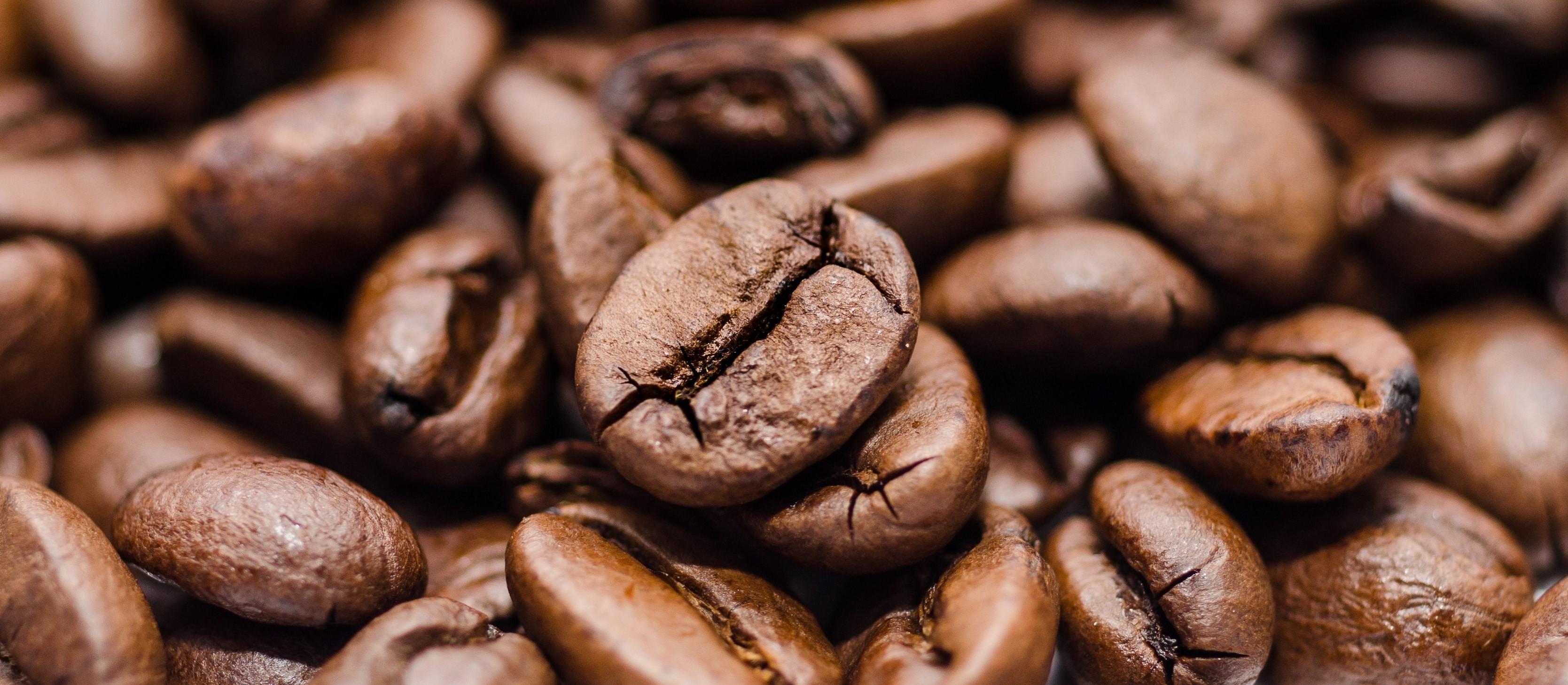 Café em coco custa R$ 6,33 kg em Maringá