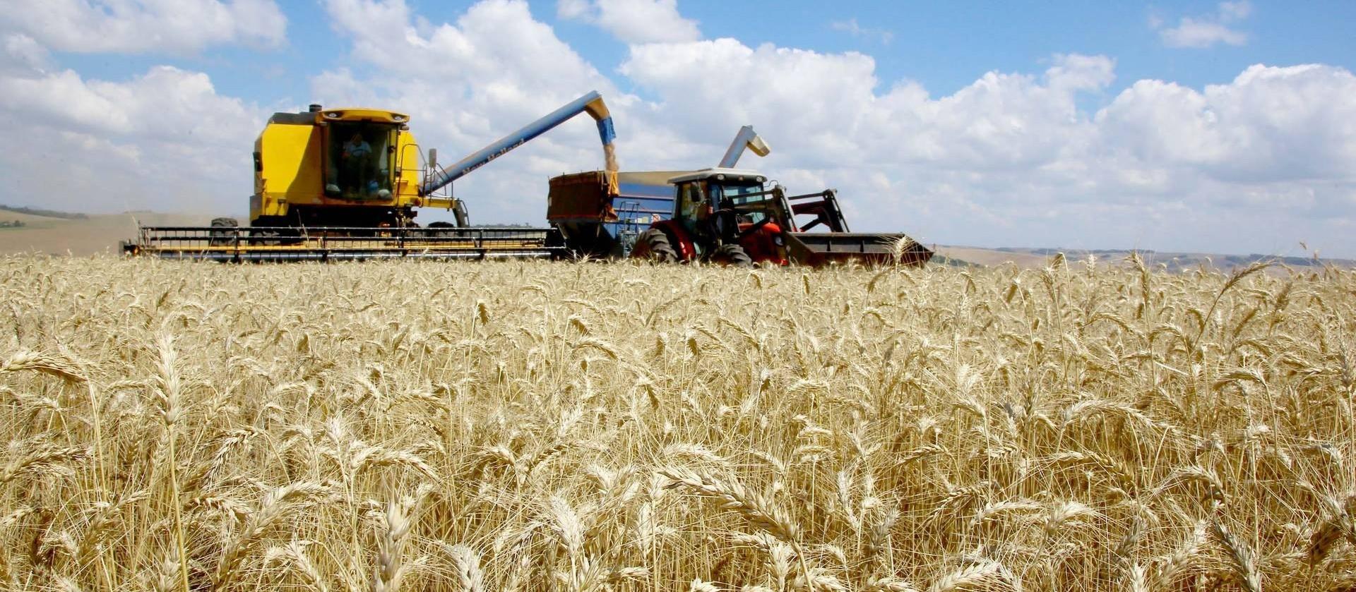 Agricultura de precisão: a importância da tecnologia no meio rural