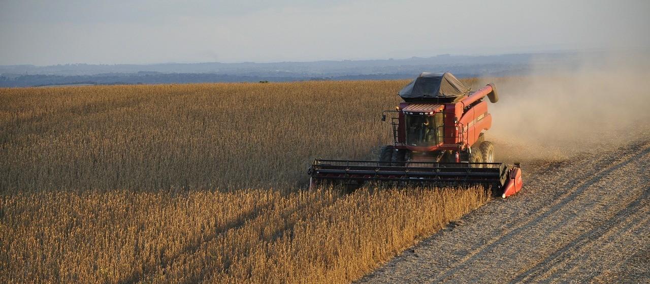 Levantamento da safra de grãos 2020/21 aponta tendência de alta