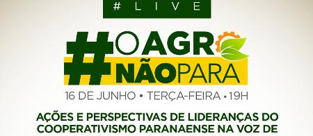 Evento online debate ações e perspectivas do cooperativismo no Paraná