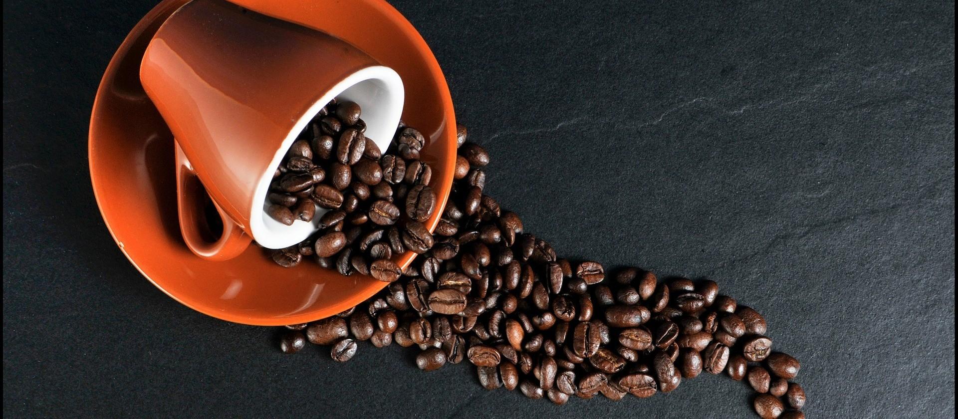 Café em coco custa R$ 8 o quilo