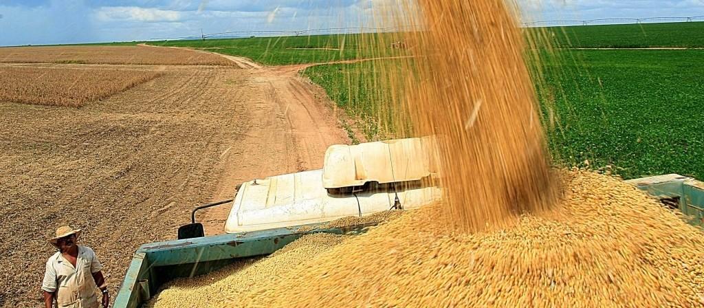 Produção paranaense de grãos deve chegar a 37,1 milhões de toneladas