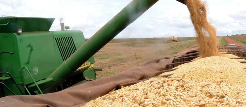 Seguro rural se consolida e ganha adesão de produtores paranaenses