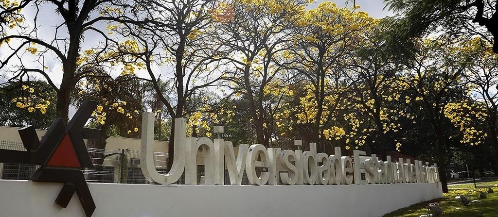 UEM oferece atendimento psicológico gratuito