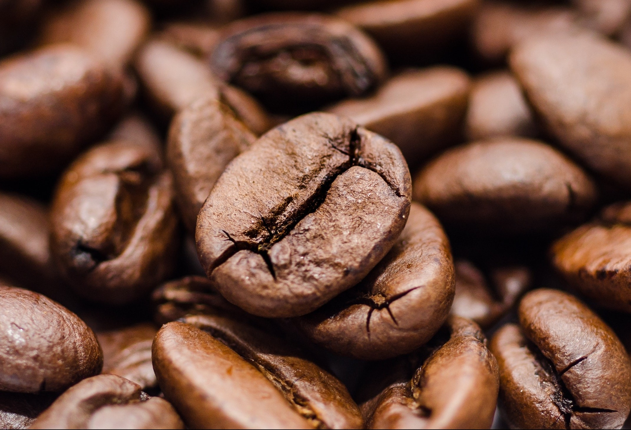 Café em coco custa R$ 6,50 kg em Maringá
