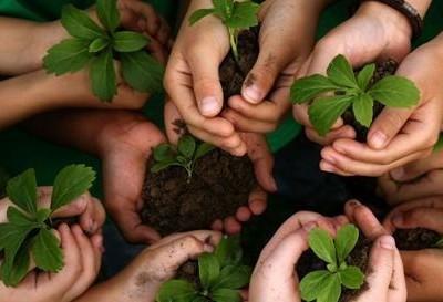 Como implantar a sustentabilidade nas escolas?