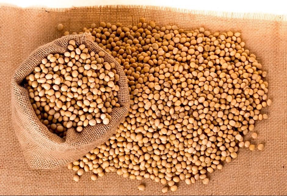 Soja custa R$ 78 a saca em Maringá