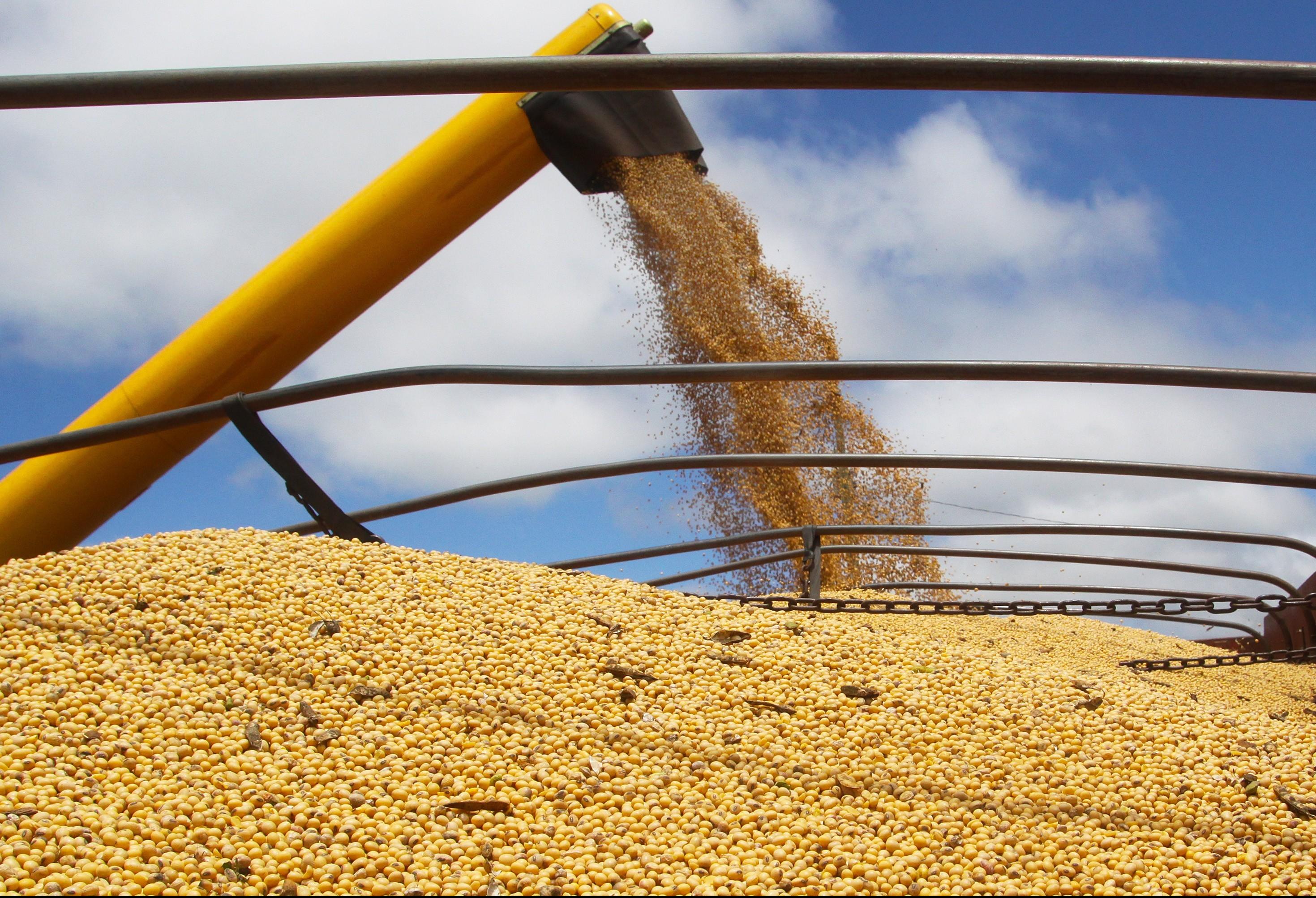 Safra recorde garantiu crescimento de 13% da agropecuária em 2017