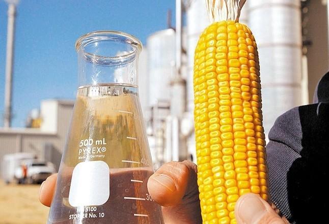 Brasil tem potencial para produzir 15 bilhões de litros de etanol a partir do milho