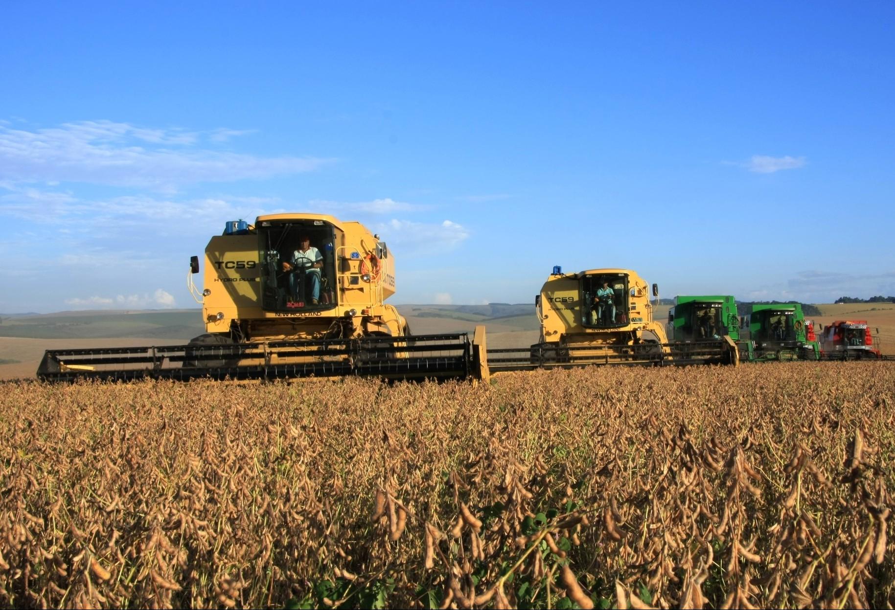 Deral reduz estimativa de produção da safra de verão no Paraná